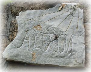 pietra altrove sfum